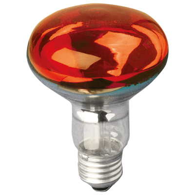 Red R080 Reflector Lamp
